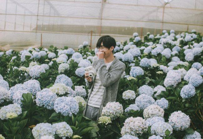 vườn hoa cẩm tú